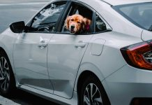 5-Amazing-Facts-about-Honda-Accord-That-Will-Blow-Your-Mind-on-focuseverything